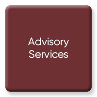 AI Advisory Services
