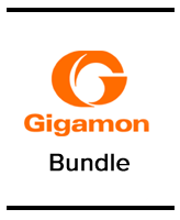 Gigamon Bundle