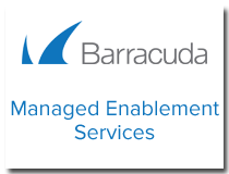 Managed Enablement Services