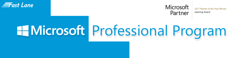Microsoft Professional Partner Program