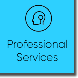 Microsoft Professional Services