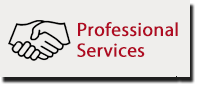 Wireless Professional Services