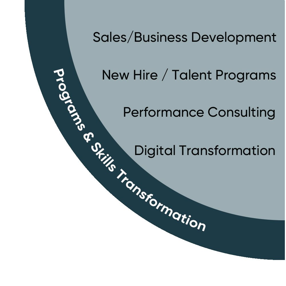 Fast Lane Professional Services: Programs and Skills Transformation
